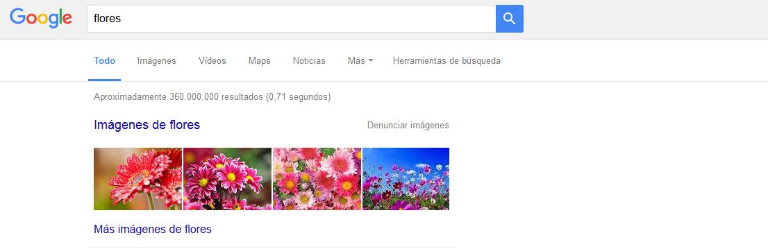 universal_search_flores